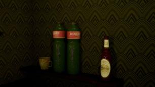 Bottles ingame